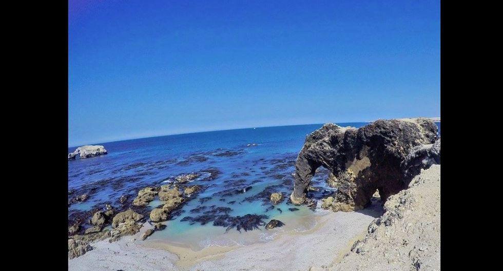 Playa San Fernando, Marcona, Nazca. A unos 70 kilómetros al suroeste de Nazca, se ubica este refugio natural con una rica fauna. Encontrarás algunos animales como el Cóndor Andino, la nutria marina, los pingüinos de Humboldt, etc. También, el visitante puede encontrar algunas zonas destinadas para poder bañarse en sus aguas. (Foto: Twitter/SaksayPeru).