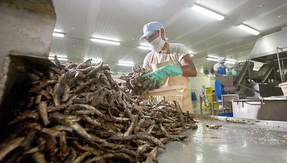 El Produce dispuso que finalice el 4 de abril la segunda temporada de pesca de anchoveta en la zona norte-centro del litoral peruano.(Foto: GEC)