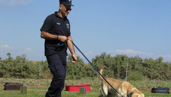 Policías estadounidenses dieron un gran ejemplo al mundo al sacar a pasear a más de 100 perros de un refugio | Foto: Pixabay / Referencial