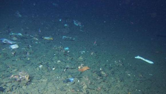 Un equipo científico ha logrado recopilar hasta la fecha imágenes de más de 3.500 del lugar