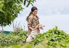 10 pasos que definen una fiel y responsable tenencia de mascotas