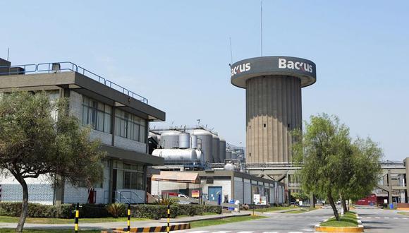 Pese al escenario sombrío, Backus continuó invirtiendo y destinó de enero a junio S/ 66,2 millones en ampliar la capacidad de las plantas cerveceras y centros de distribución. (Foto: GEC)