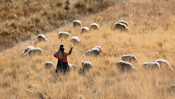 Cusco: Luego de la nieve llega la sequía