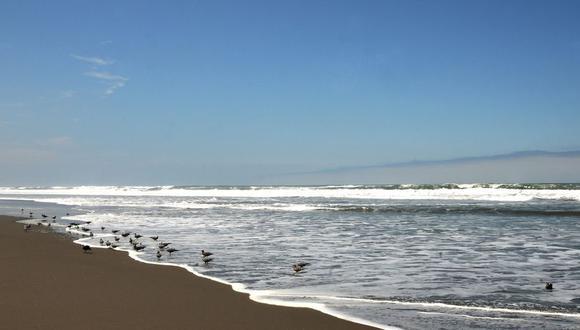 Las playas aptas son La Punta, Primavera y Pozo Colorado, en la provincia de Camaná; Catarindo, Punta de Bombón, Mejía, Albatros, la primera y segunda playa de Mollendo, en Islay. (Foto: Promperú)