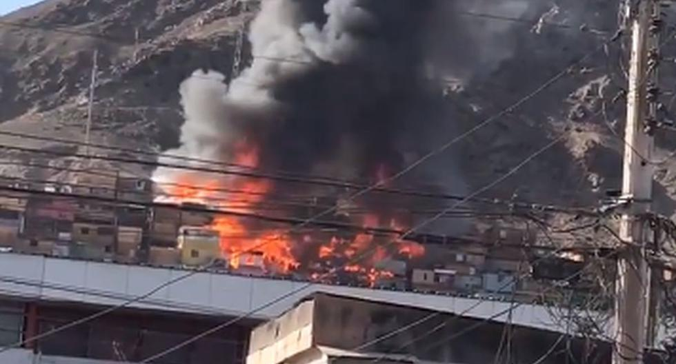 At least 20 homes affected by a fire camp in Chile |  VIDEOS