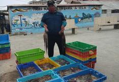 Precio del pescado sube en Lima: ¿Qué plantean los restaurantes marinos para reducir el impacto?
