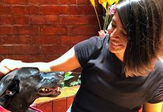 WUF: Conoce de cerca los beneficios de vivir la cuarentena en compañía de una mascota