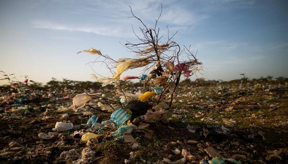 Planeta Vivo 2020 - Foto Esteban Vega La Rotta-contaminacion por plastico en Maicao, La Guajira