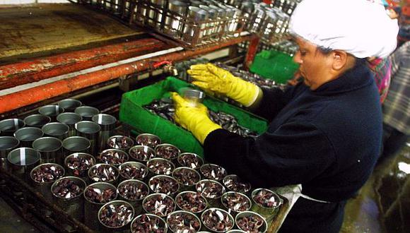 Producción de conserveras de anchoveta cae 90% en Áncash