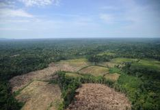 Perú: más de 12 mil hectáreas de deforestación y 9 pistas de aterrizaje para narcotráfico en Ucayali