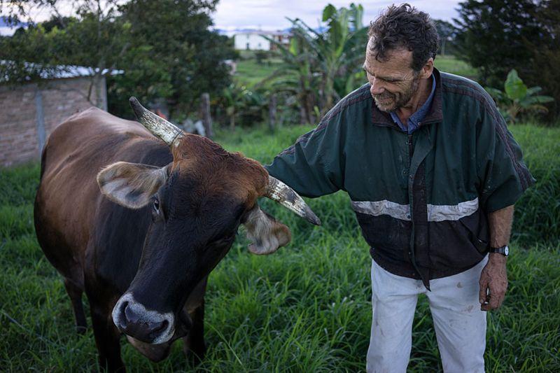 Ned fue una persona importante en la historia de la comuna y en la vida de Jenny, sus hijos y sus nietos. Todavía vive en Colombia, en una granja, con su familia. (Foto: TRISTAN MARTIN, vía BBC Mundo).