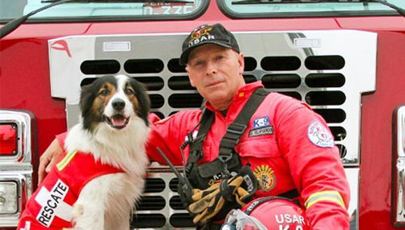 Entrenar a perros de búsqueda y rescate es un proceso muy largo, puede durar 2 años para el nivel básico y un año más para nivel avanzado.