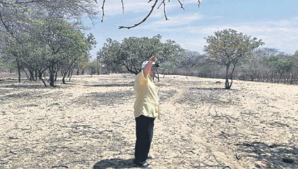 Quince muertos y 742 casas afectadas por el mal tiempo este año