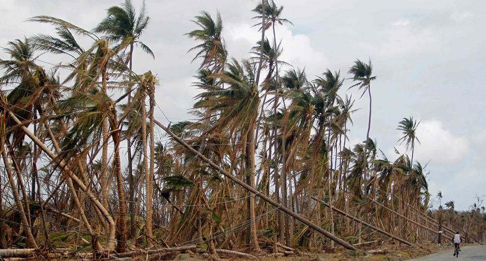 Un ciclista pasa junto a torres de electricidad y palmeras tumbadas tras el paso del huracán María por Humacao, Puerto Rico. (AFP)