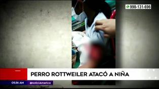 SMP: niña fue atacada por un perro rottweiler cuando jugaba