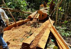 Fiscalía pide 35 años de prisión para madereros por crimen de ambientalistas