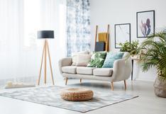 5 cuidados en casa que tu alfombra agradecerá | FOTOS