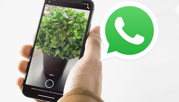 ¿Tu WhatsApp toma fotos con zoom? Conoce cómo corregir la cámara otra vez. (Foto: MAG)