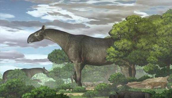 Reconstrucción ecológica de rinos gigantes y su fauna acompañante en la cuenca de Linxia durante el Oligoceno. (Chen Yu)