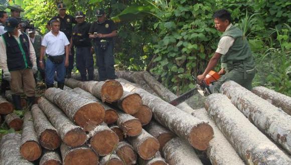Ucayali: Satélites ayudarán a combatir la deforestación
