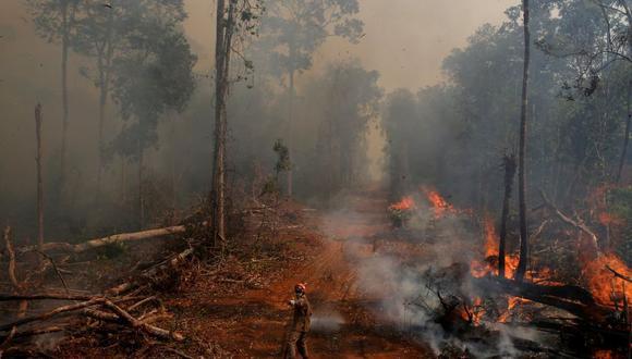 """""""Los incentivos financieros podrían estimular a los agricultores a conservar más bosques en sus granjas y comenzar a reforestar a lo largo de ríos y arroyos antes de la fecha límite del 2040"""". (Foto: Reuters)"""