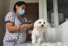 Esta cuarentena también ha afectado a los perros y gatos de pelaje largo