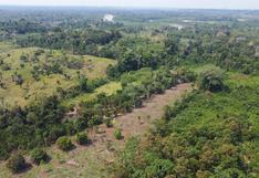 Unipacuyacu: casi treinta años en espera de la titulación, mientras invasores y  narcotraficantes devastan su territorio