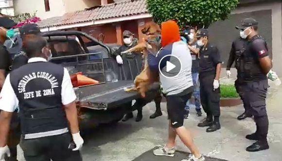 Arrestan a ciudadano durante recorrido de autoridades municipales. (Imagen tomada de video de la Municipalidad de San Miguel)