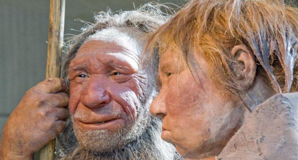 Los nuevos hallazgos sobre los neandertales arrojan una luz diferente sobre la vida de nuestros primos lejanos. (Foto: AP)