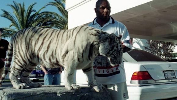 Tyson reveló cómo compró a sus tres tigres de Bengala.