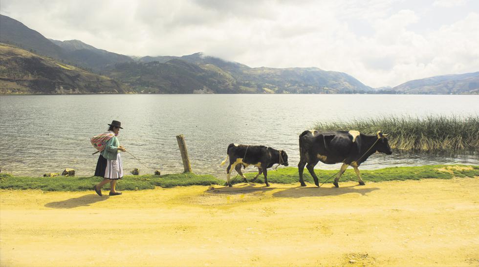 Experimenta la cultura de Apurímac durante sus carnavales - 2