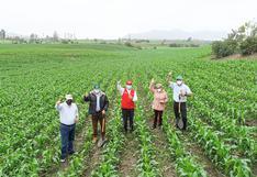 Conoce la iniciativa de Backus y el Ministerio de Agricultura y Riego para reactivar la agricultura nacional