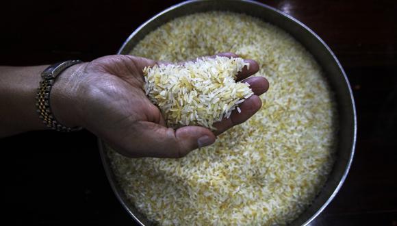 Con los datos obtenidos, los agricultores podrán potenciar algunas características del arroz para obtener variedades de mayor rendimiento, más resistentes o más nutritivas. (Foto: Reuters)