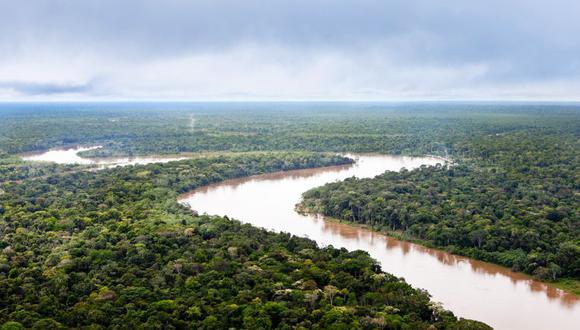 El Amazonas, en riesgo en un eventual gobierno de Bolsonaro en Brasil. (Rodrigo Rodrich - El Comercio)