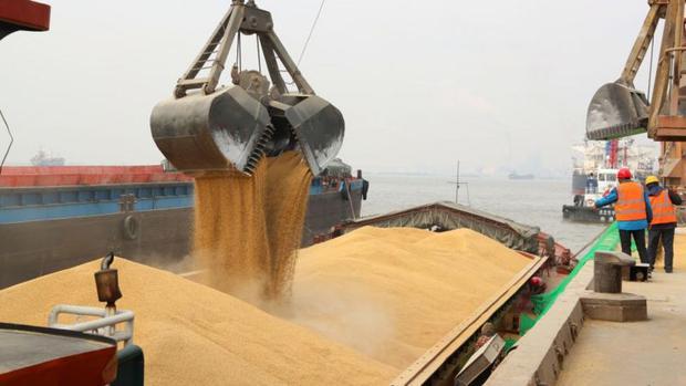 I prezzi del cibo, come questo orzo canadese scaricato a Nantong, in Cina, sono aumentati a causa di una serie di fattori.  (VCG/immagini Getty).