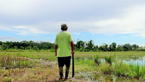 * La 'Operación Mercurio 2019', desplegada hace una semana para recuperar La Pampa y erradicar la extracción ilegal de oro, aumentó el hostigamiento contra este grupo de defensores ambientales. Foto: Mongabay Latam / Vanessa Romo