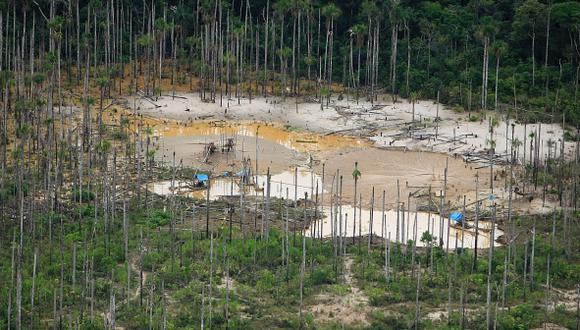 El comercio de madera ilegal amenaza con deforestar Mozambique
