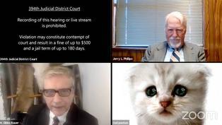 Viral: abogado aparece con un filtro de gato durante un juicio virtual