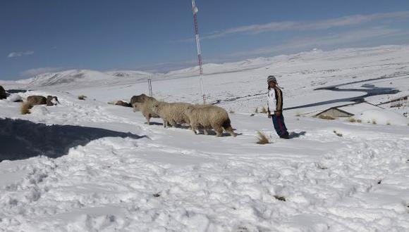 Catorce regiones en estado de emergencia por heladas y friaje