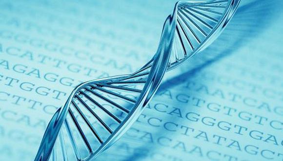 Logran almacenar datos digitales en cadenas de ADN artificial