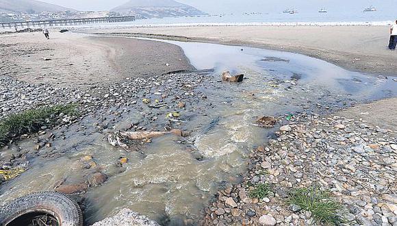 Chancay: 5 empresas pesqueras investigadas por moluscos varados