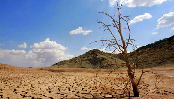 El agujero en la capa de ozono ha provocado cambios en los vientos del hemisferio sur, cambiando la trayectoria de las lluvias y generando sequías nunca antes vistas. Foto: FAO