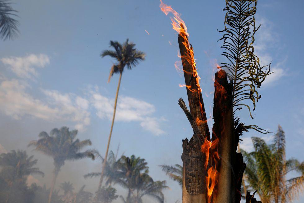 Arde la Amazonía de Brasil: Imágenes aéreas de los devastadores incendios. Foto: Reuters