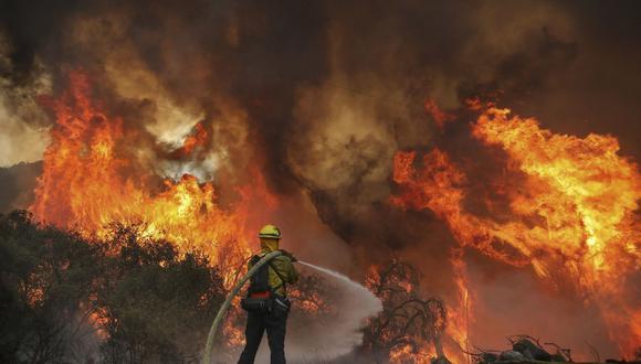 Los bomberos del condado de San Miguel luchan contra un incendio forestal a lo largo de Japatul Road durante el incendio del valle en Jamul, California. (SANDY HUFFAKER / AFP)