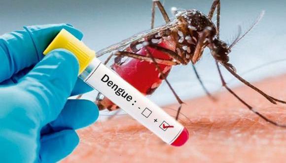 El dengue es una enfermedad producida por un virus de la familia de los flavivirus (Foto: freepik)