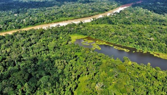 Deforestación en la Amazonía peruana se redujo en 4.1 %, según el Minam (Foto: Minam)