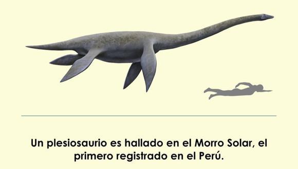 Los plesiosaurios llegaron a convivir con los dinosaurios. (Foto: UNMSM)