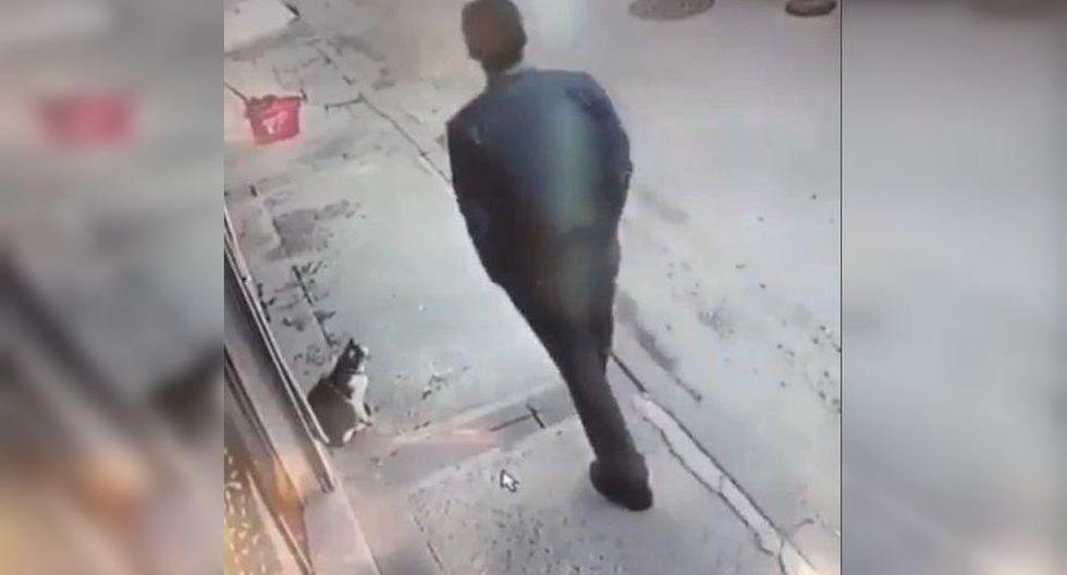 Así es como reaccionó este gatito luego de que una persona camine frente a él mientras este estaba enojado. (Foto: Facebook)