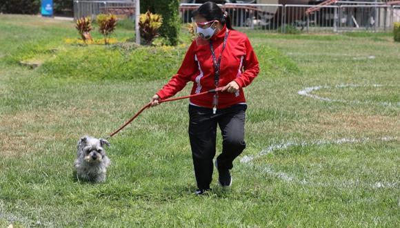 Las personas tendrán un día la semana para disfrutar de los parques zonales junto con sus mascotas. (Foto: Municipalidad de Lima)