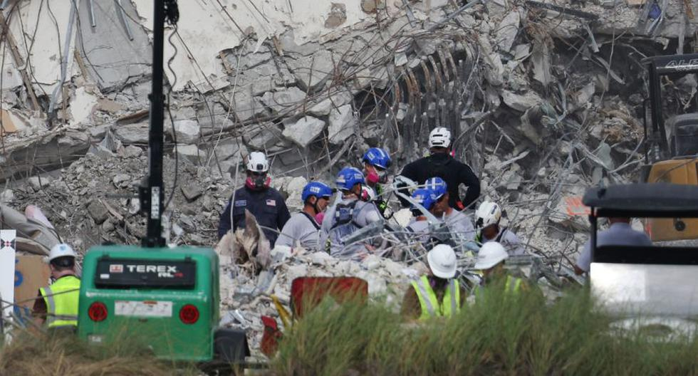 Miami: Cat found alive in collapsed building in Surfside